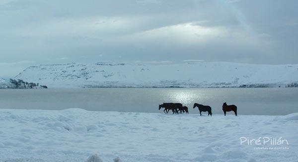 Lago Caviahue en invierno/Vista desde la costanera